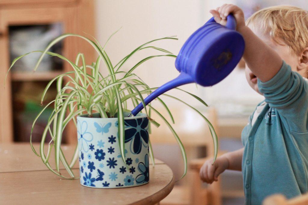 Ein Kind gießt die Pflanzen